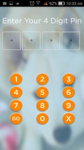 Enter 4 digit code